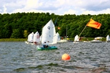 Opti-Cup 2014 in Lindow